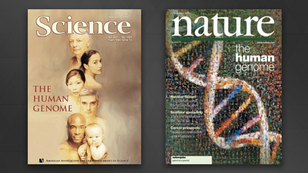 human genome project nature magazine 2003